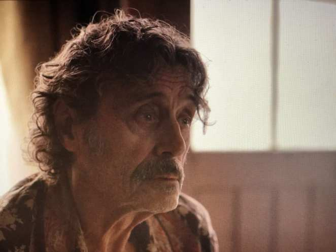 Ian McShane as Al Swearengen