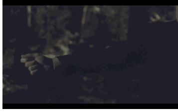 The dark woods in Twin Peaks when Cooper loses Laura