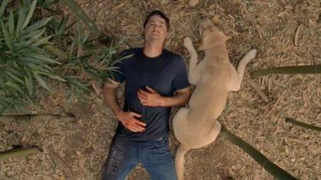 Jack lies with a dog in Lost