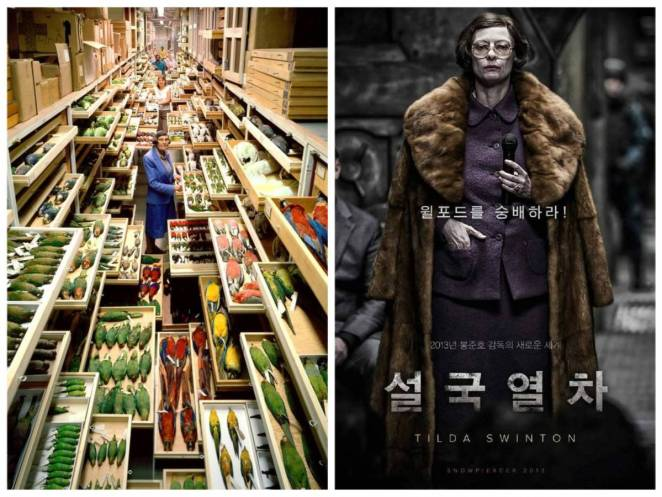 Double Image. 1-The photograph of feather specialist Roxie Laybourne surrounded by dead birds that inspired Mason's look 2-Promotional Korean poster with Mason about to give her speech