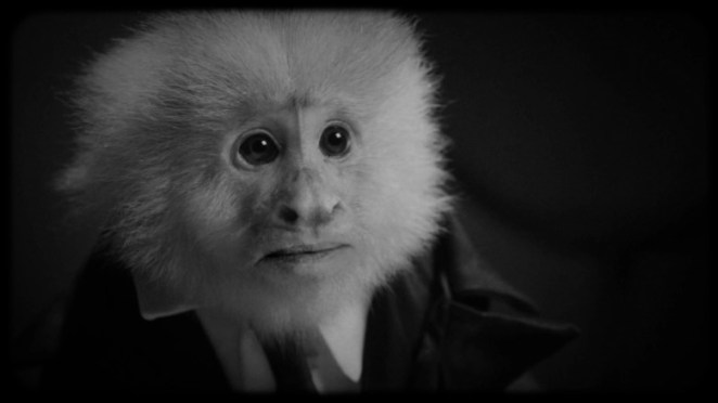 A monkey, with human mouth, discusses life with David Lynch
