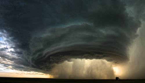 Big Picture: National Geographic Photography Contest