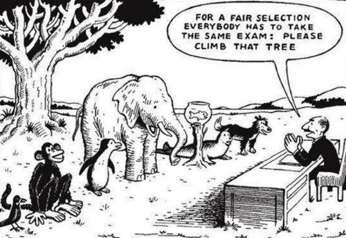 Para una seleccion justa, todo el mundo tendrá la misma prueba:  Suban al arbol
