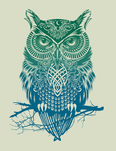 Warrior Owl Stretched Canvas by Rachel Caldwell / Society6