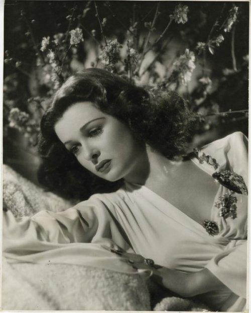 """Joan Bennett, 1940 """"Eu não acho que muito da maioria dos filmes que fiz, mas ser uma estrela de cinema era algo que eu gostei muito."""" Via stanwycked"""