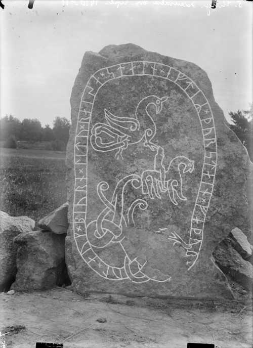 "marsiouxpial:  Rune stone, Harg, Uppland, Sweden (via Swedish National Heritage Board) ""Rune stone (U 448) at Harg. The inscription says: ""Igul and Björn had the stone raised in memory of Torsten, their father"". Runsten (U 448) vid Hargs gård. Ristningen säger: ""Igul och Björn läto resa stenen efter Torsten sin fader"". Parish (socken): Odensala Province (landskap): Uppland Municipality (kommun): Sigtuna County (län): Stockholm Photograph by: Erik Brate Date: 1910-1911 Format: Glass plate negative"""