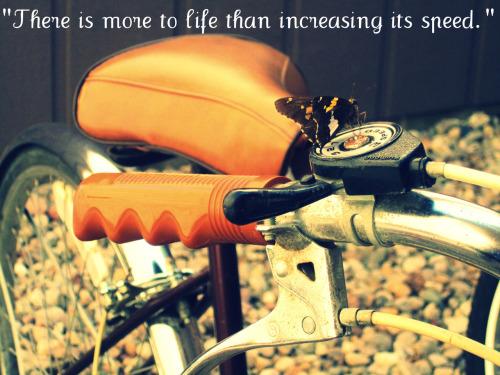 Quote- Mahatma Gandhi Photo- Cait