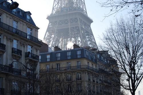 ysvoice:  | ♕ | Eiffel from Paris street | by Phil Harman | via film-grain