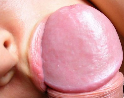 Sexo para parejas - primer plano de sexo oral