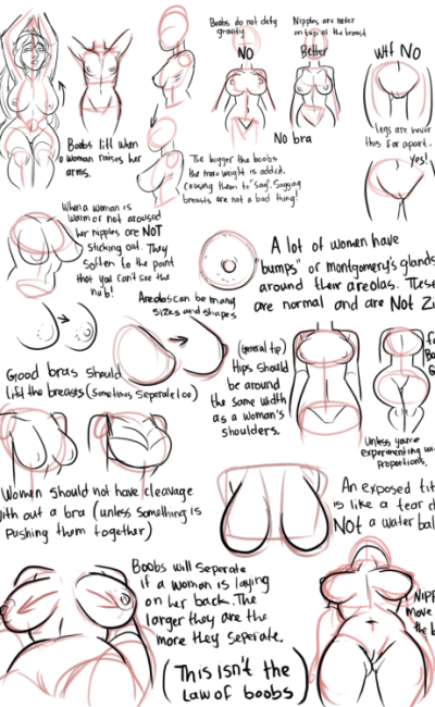 many quick line drawings of realistic women's breasts, with text