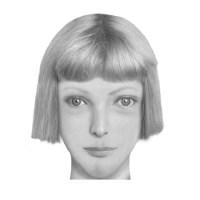 Edebi robot resimler