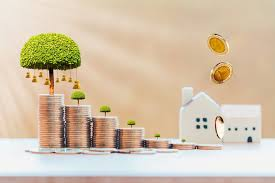 INVESTING WISELY – INTRODUCTION
