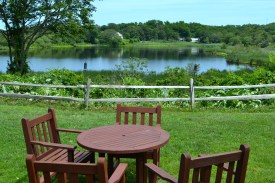 A beautiful view at plymouth plantation. And a perfect place to have lunch.