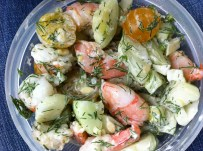 shrimp and dill cucumber salad