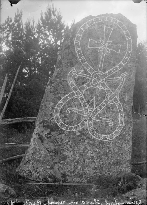 "marsiouxpial:  Rune stone, SkrÃ¥msta, Uppland, Sweden (via Swedish National Heritage Board) ""Rune stone (U 459) in Skråmsta. The inscription says: ""Saxe had these memorials made in memory of Est, his fader, and Torgunn (in memory of) her son."" Runsten (U 459) i Skråmsta. Ristningen säger: ""Saxe lät göra dessa märken efter Est, sin fader, och Torgunn (efter) sin son."" Parish (socken): Haga Province (landskap): Uppland Municipality (kommun): Sigtuna County (län): Stockholm Photograph by: Erik Brate Date: 1914 Format: Glass plate negative"""