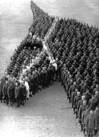 People standing in the shape of a horse