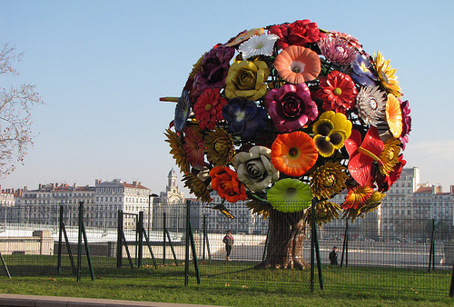 agile-:  L'arbre à fleurs. Hinhin. (by Eat_Thaaat)