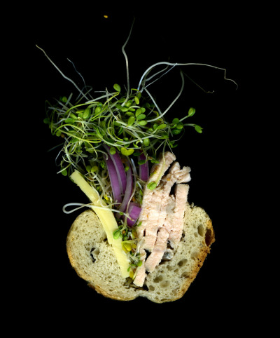 Homemade: Fresh Turkey, Sprouts, Swiss Cheese, Purple Onions On a Baguette. Scanned in collaboration with Microsoft's Deep Zoom. 10 more sandwiches and the full experience coming soon.