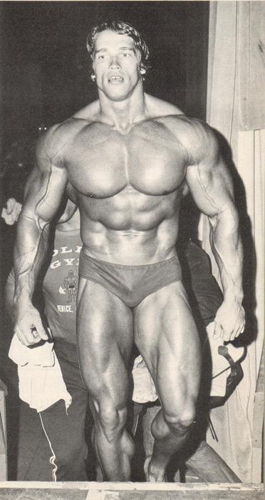 yes arnie