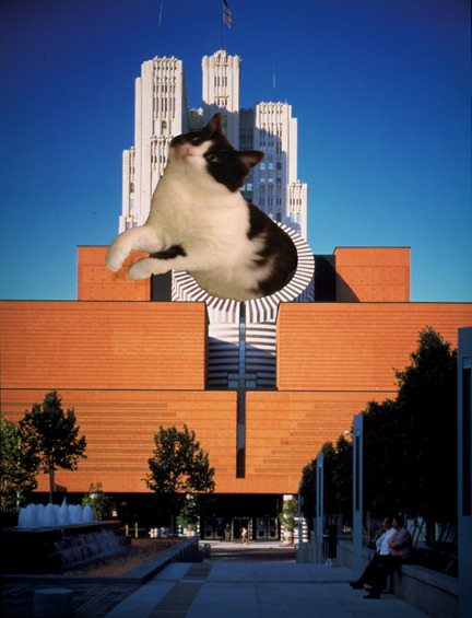 sfmoma: Another SFMOMA staff cat! This kitty is named Gertrude, after (you guessed it) Gertrude Stein.
