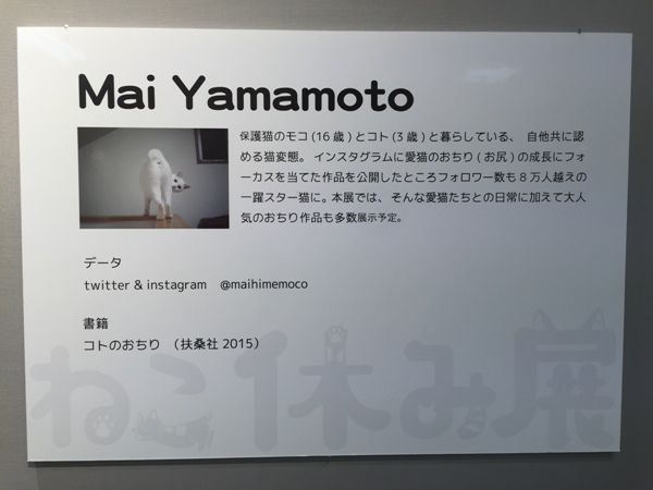 Mai Yamamoto