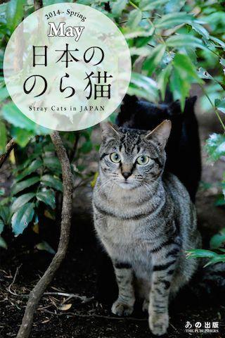 『日本ののら猫』