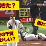 【珍プレー 爆笑】プロ野球珍プレー ハプニング編 vol.2