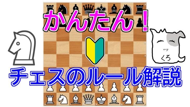手を動かして覚えるチェスのルール【簡単初心者入門動画!】