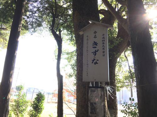 橋本,木の葉モール橋本,橋本八幡宮,福岡,西区,ニトリ