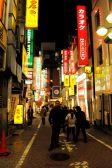 Shibuya, Roppongi, Harajuku, Meiji-Jingu, and Shinjuku