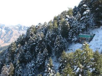 Shimla and kasauli, new year 240