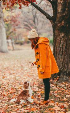 dog-walk