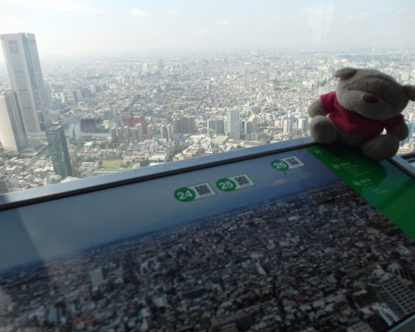 View of Mount Fuji from Tokyo Metropolitan Government Building on a clear day?