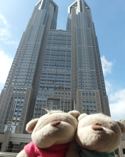 SAM 7727 e1509974278766 768x1024 12 Days of Japan Travels: Tokyo Metropolitan Government Building Shinjuku Pablo and Shibuya Day 2!