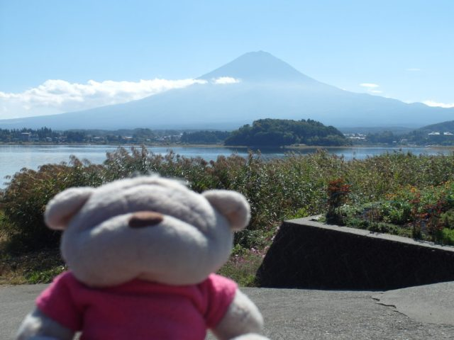 Garden, Lake Kawaguchiko and Mount Fuji Shot