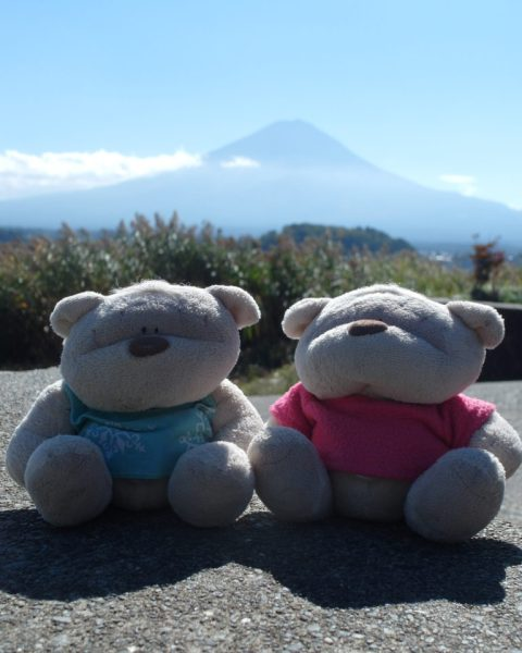 2bearbear Mount Fuji View @ Kawaguchiko Natural Living Center