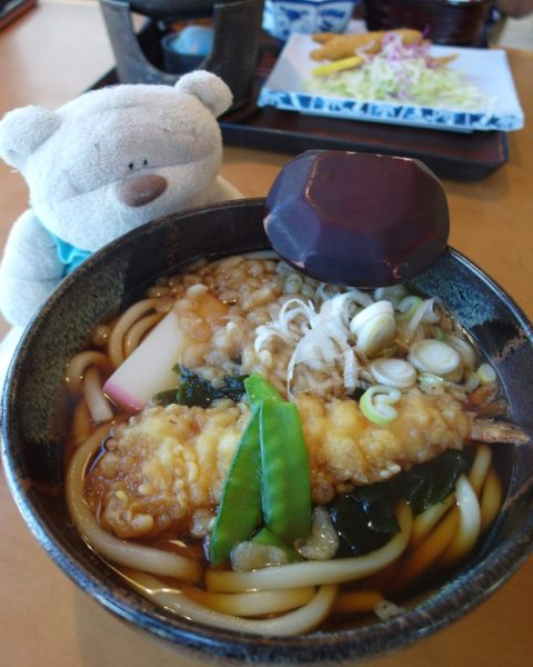 SAM 7926 e1510460340907 768x1024 12 Days of Japan Travels: Lake Kawaguchiko Natural Living Center & Sightseeing Bus Tour Day 4!