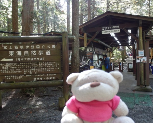 Untitled195 12 Days of Japan Travels: Lake Saiko Wind Cave, Ide Brewery Mount Fuji and Bus Ride to Takayama Day 5