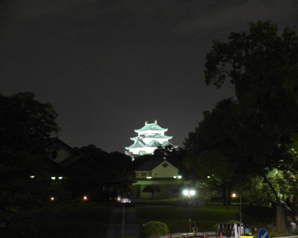 Nagoya Castle at Night