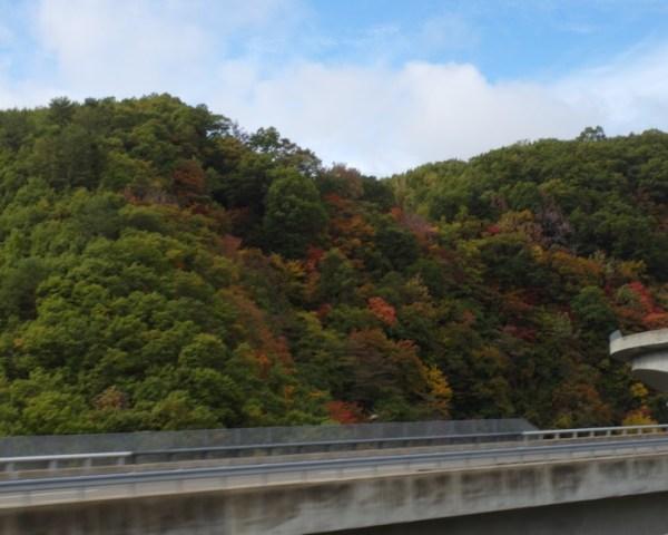 Start of autumn foliage Takayama