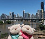 Amazing views of Brisbane CBD and Brisbane River along the way