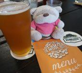 Wappa Summer Lovin Eumundi Brewery