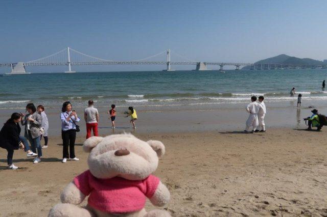 View of Gwangan Bridge from Gwangalli Beach Busan
