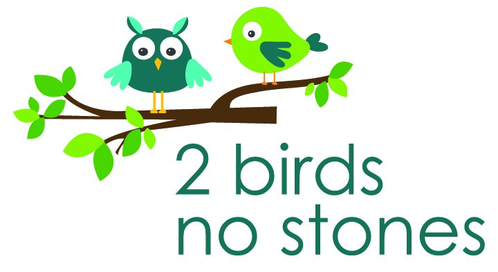 2 Birds No Stones