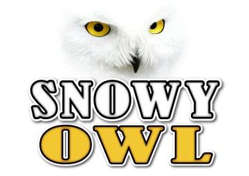 Concept Logo 2