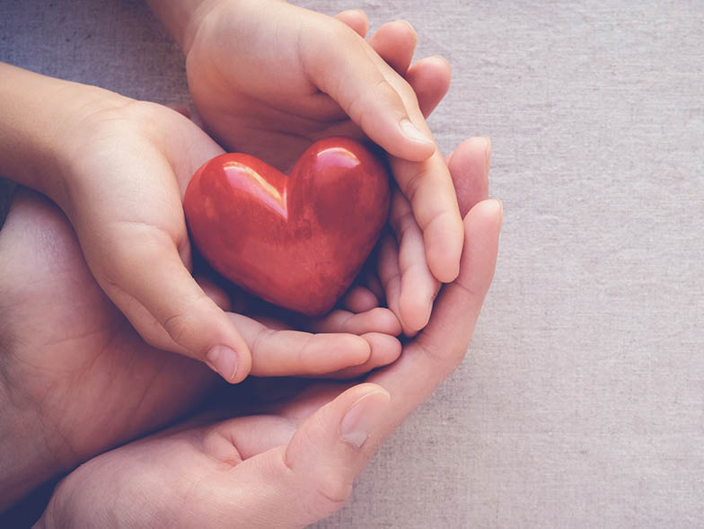 Two hands holding heart