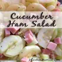 Cucumber Ham Salad 2CM