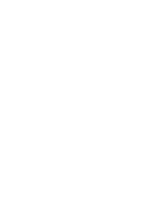 2d3d solution Logo white