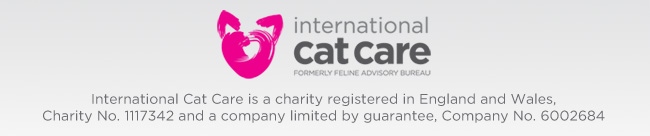 icatcare-banner-bottom