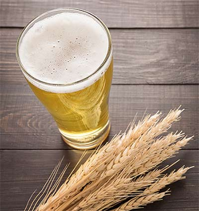 Malts for Brewing Helles Recipe